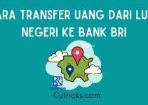 Cara Transfer Uang Dari Luar Negeri Ke BRI CEPAT Dan AMAN!!